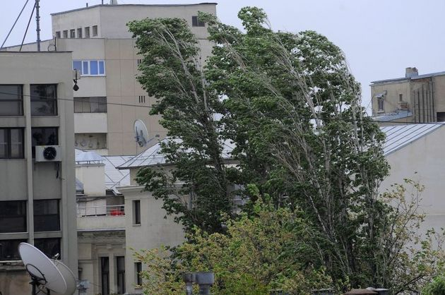 Patru persoane din Mehedinți, rănite în urma manifestărilor codului roșu de furtună